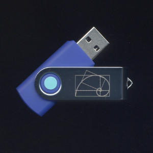 Algebra 1 Flash Drive
